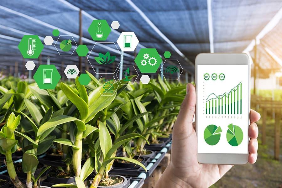 LoRaWAN Starterkit für landwirtschaftliche Überwachung